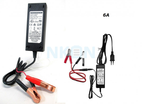 Enerpower/ Fuyuang 14.6V LiFePo4 acculader - 6A